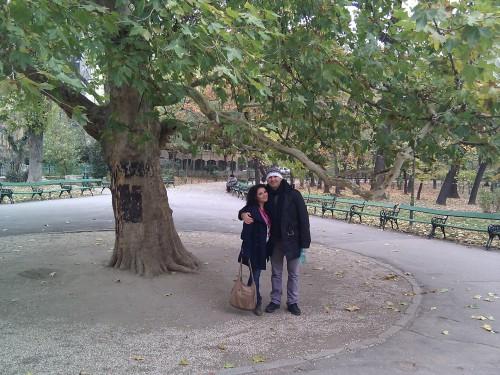 """Copacul iubirii si a amintirilor """"În centrul vechi din Bucureşti"""" Maria Suharu """"În centrul vechi din Bucureşti"""" Maria Suharu Copacul iubirii si a amintirilor 500x375"""