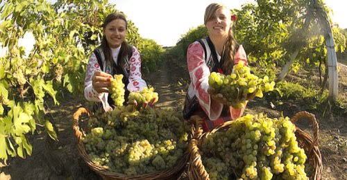 Vinuri romanesti expuse la targul din Londra